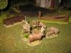 Achtung Kalauer: Schaf-Schützen