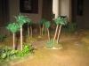 Auch im Palmenwäldchen tut sich was