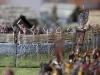 2012AustrianSalute_Web020