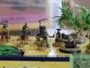 2012AustrianSalute_Web039