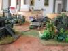 2012AustrianSalute_Web118
