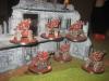 Ein Haus voller Kataphrons (Django)
