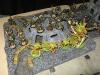 Orks, gedeckt von Tyras (igittigitt)