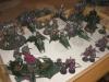 Dark Eldar (Hmpf) und Grey Knights (Janko)