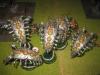 Necron-Cluster (Schlachthaus)