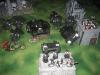 Black Templars (Fiedler Maxi)