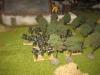 Die Rifles im Obstgarten