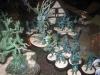 Der Geisterwald von Melifaux