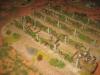 Die US-Infanterie in den Weingärten