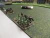 Mulis der Paras im Maisfeld
