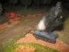 Pot-shot - der erste deutsche Panzer brennt aus