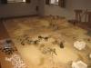 Die Wüstenschlacht im Überblick