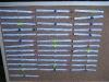 Das Masterboard für die Singles-Runde am Vormittag