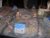 Kesselschlacht Zwerge gegen Skaven