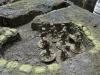 Die britische Kavallerie ist abgesessen und im Graben in Deckung