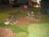 Die Rifles - wie bei Waterloo