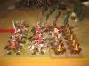 Französische Elite gegen Savoyen-Dragoner
